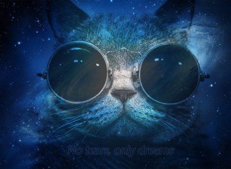 Ognuno guarda le stelle con i sogni che ha.