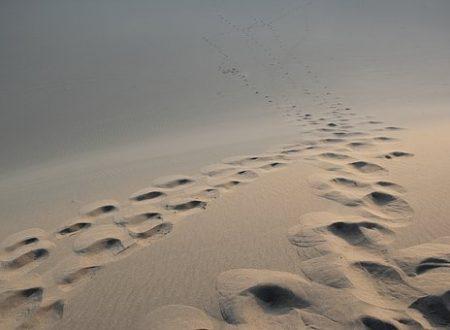 La distanza è assolutamente incalcolabile quando non è fatta di chilometri.[Yelena b.]